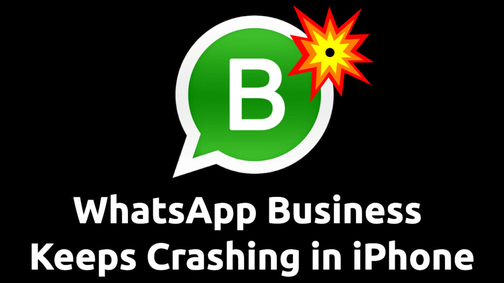 whatsapp business keeps crashing iphone