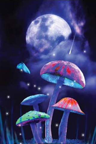 magic mushrooms live wallpaper 5 Best Live Wallpapers for Android Mobile