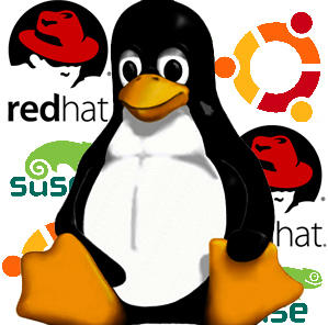 linux all How to Build Your own LINUX Distro in Less than 5 Minutes ?