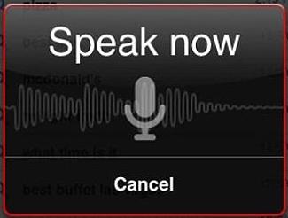 google voice search ipad