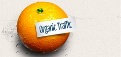 Organic Traffic Growth Forecasts Can Make or Break Your Blog