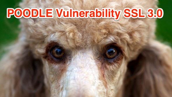 poodle-ssl-3-exploit