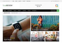 TrueReview Theme Junkie WordPress Theme Review
