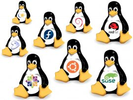 linux distributions new users beginners